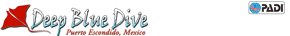 Mexico, Puerto Escondido – Deep Blue Dive School – PADI Master Scuba Diver Trainer since 2003